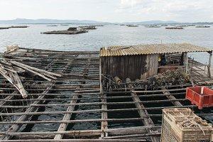 Mussel aquaculture rafts