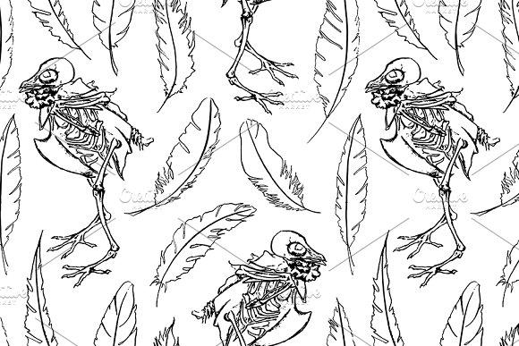 Skeletone Dove Feather Bird Pattern