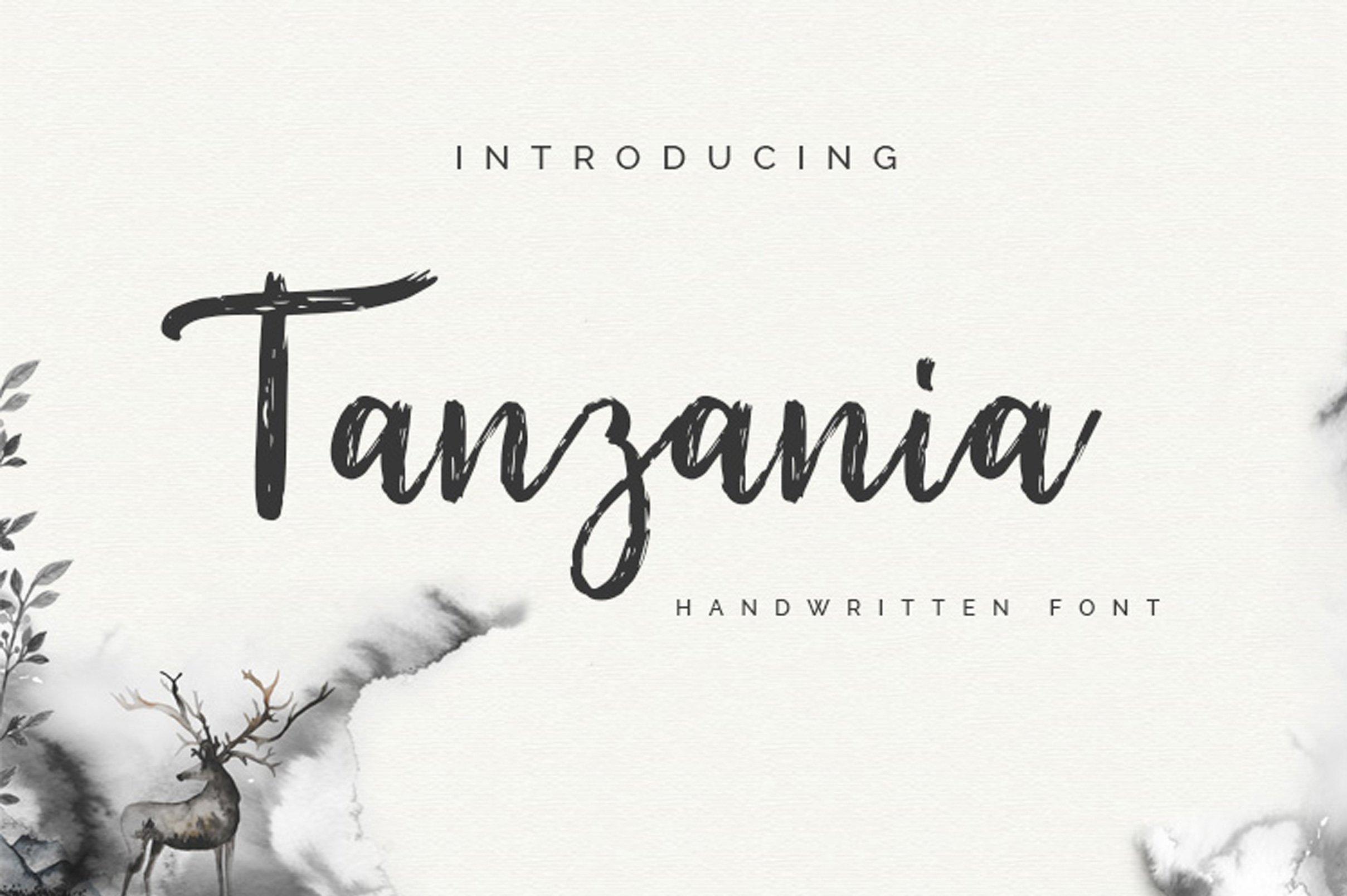 Tanzania Script Font Fonts Creative Market