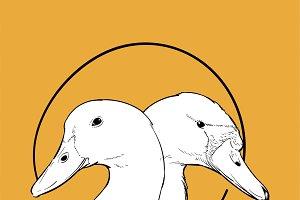 Illustration of ducks