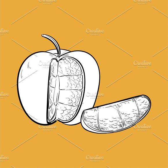 Illustration Of Fruit
