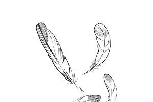 Illustration of freedom concept