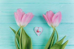 Two pink tulips and decorative heart