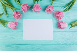 Pink tulips and blank of paper