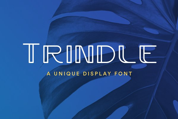 Best Trindle Sans | Display Font Vector