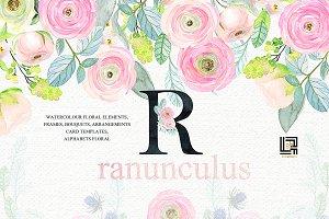 Buttercups. Ranunculus pink & mint
