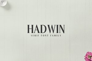 Hadwin Serif 4 Font Family Pack