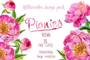 Paradise pink peonies PNG watercolor