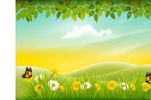 Happy summer background. Vector