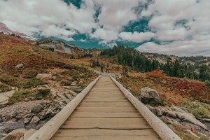 Mt. Rainier Hiking Path