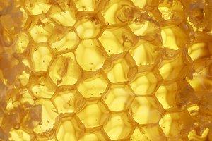 медовые золотистые соты текстура
