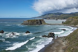 Goat Rock Beach, California