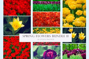 Spring flowers bundle 2