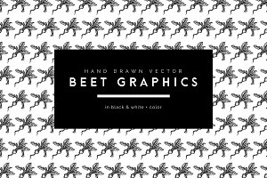 Hand Drawn Vector Beet Graphics
