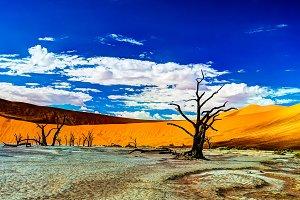 Deadvlei in Namib-Naukluft national park, Sossusvlei, Namibia