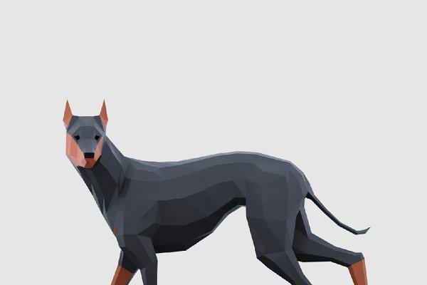 Animal: Studio Ochi - Dogs