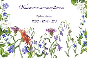 Watercolor summer flowers