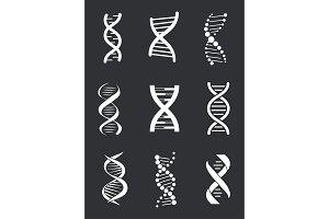 DNA Macromolecule Human Individual Genetic Code