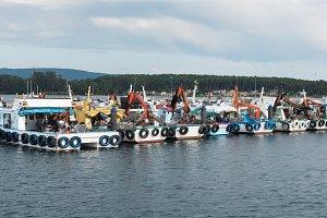 Mussel aquaculture boats