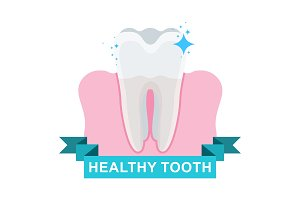 healthy tooth and gum