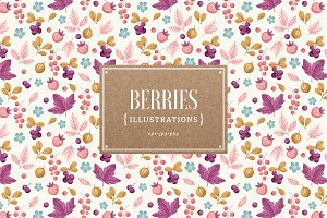 Berries illustrations