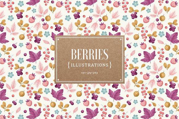 Berries Illustrations