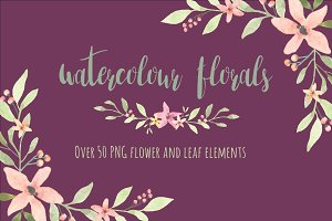 50+ Hand painted Watercolor florals