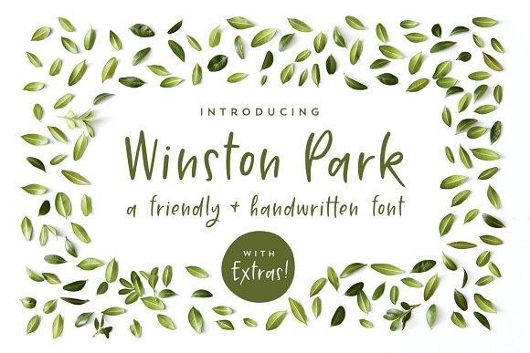 Winston Park A Handwritten Font