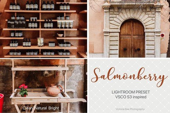 SALMONBERRY VSCO Cam S3 LR Presets