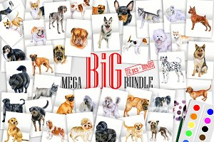 Watercolor Dogs. BIG BUNDLE