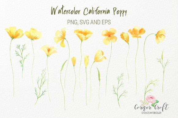 California Poppy PNG EPS SVG