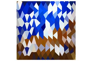 Navy Blue Abstract Low Polygon Backg