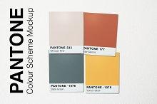 Pantone Colour Scheme Mockup