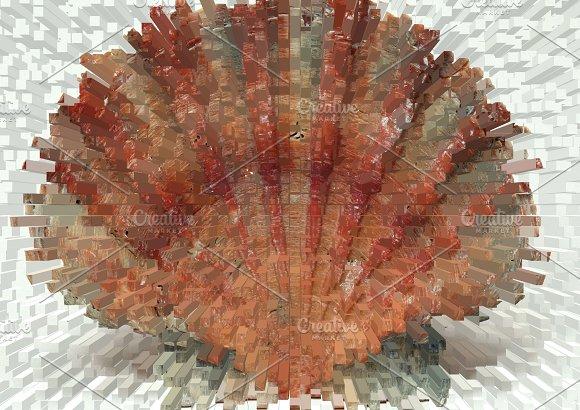 Abstract Seashell Illustration