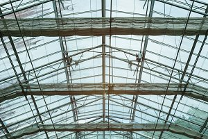 glass roof of a building