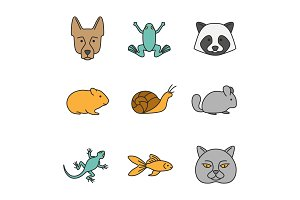 Pets color icons set