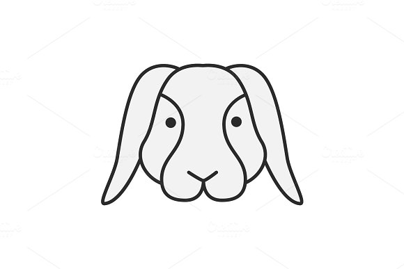 Dwarf Rabbit Color Icon