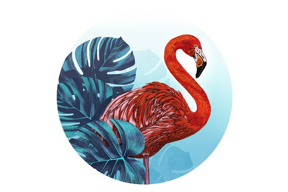 Flamingo Bay.