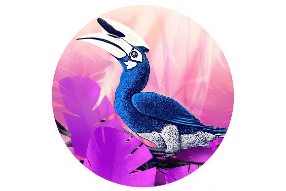 Hornbill Island