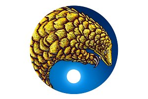 Return of the Golden Pangolin.