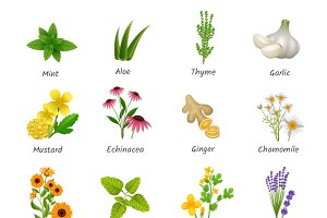 Healing herbs and medicinal plants