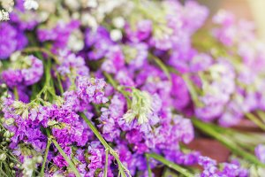 Purple statice flowers