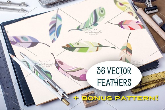 Set of 36 colorful vector feathers