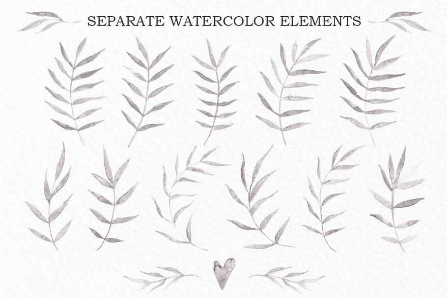 TROPICAL SHADOWS Watercolor Pack