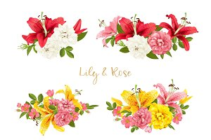 rose and lily set. vector card.