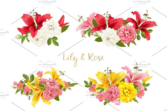 Rose And Lily Set Vector Card