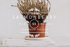 SALMONBERRY VSCO Cam S3 LR preset