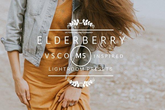 ELDERBERRY VSCO Cam M5 LR Presets