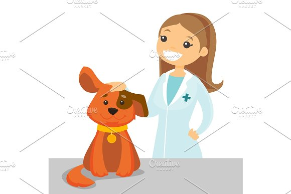 Caucasian White Veterinarian Examining Dog
