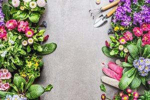 Flowers gardening frame